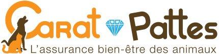 Logo Carat Pattes